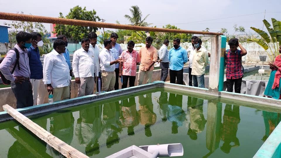 Training Camp on Spirulina Cultivation (20)