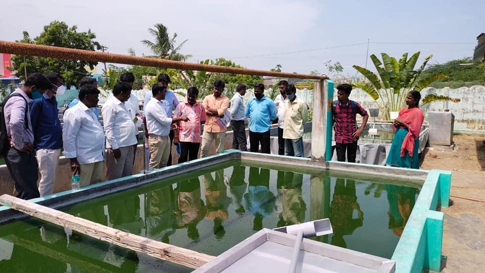 Training Camp on Spirulina Cultivation (22)