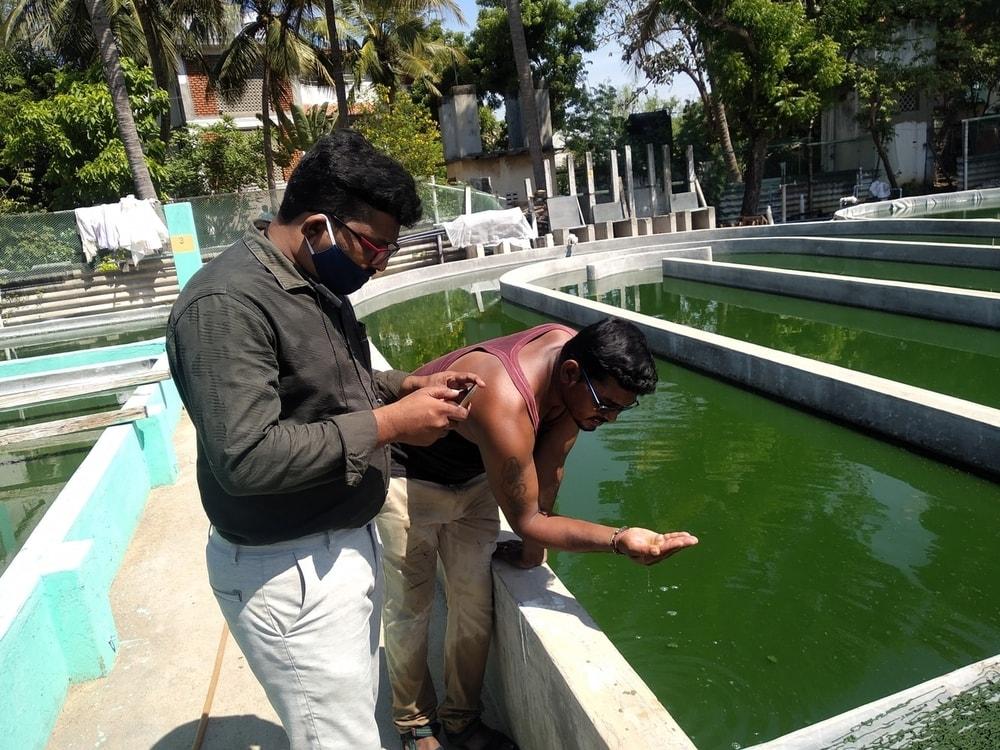Training Camp on Spirulina Cultivation (4)